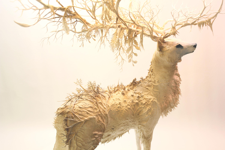 """Soleil Blanc"" de Julie Bérès © Ellen Jewett, The White Stag, 2014"
